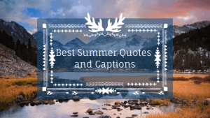 Best Summer Quotes and Captions